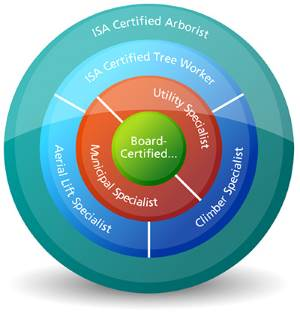 certification isa